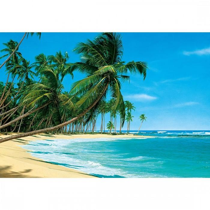 Φωτοταπετσαρία Τοίχου Τροπική Παραλία - W+G - Decotek 0220