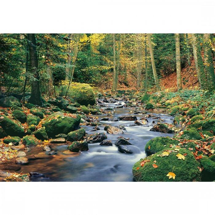 Φωτοταπετσαρία Τοίχου Ρυάκι στο Δάσος - W+G - Decotek 0278