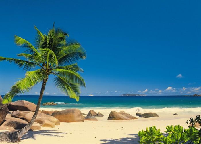 Φωτοταπετσαρία Τοίχου Παραλία - Komar - Decotek 4-006