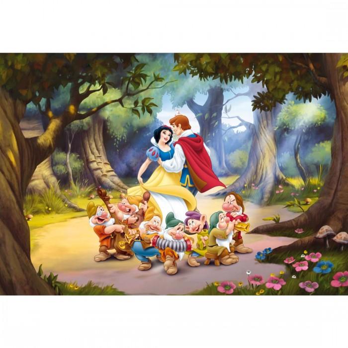 Παιδική Φωτοταπετσαρία Τοίχου Η Σταχτοπούτα - A&G Design Group, Disney & Marvel - Decotek FTD 0252