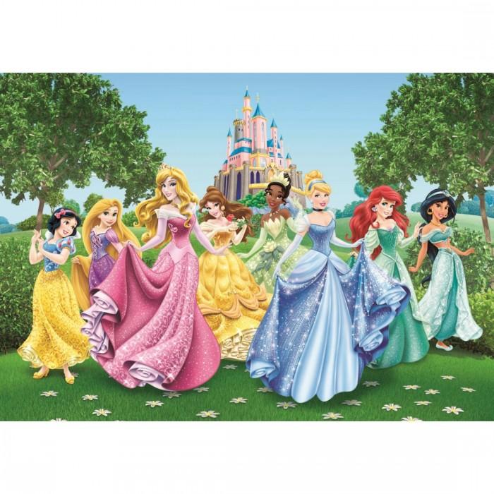 Παιδική Φωτοταπετσαρία Τοίχου Πριγκίπισσες - AG Design Group, Disney & Marvel - Decotek FTD 2207