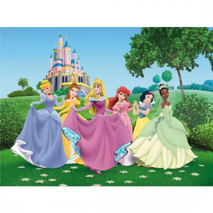 Παιδική Φωτοταπετσαρία Τοίχου Πριγκίπισσες - A&G Design Group, Disney & Marvel - Decotek FTD xxl 0249