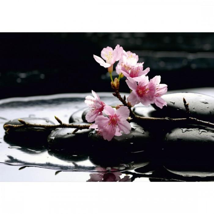 Φωτοταπετσαρία Τοίχου Χαλάρωση Zen - A&G Design Group - Decotek FTS 0185