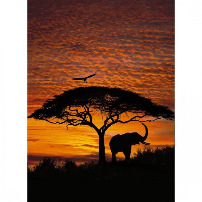 Φωτοταπετσαρία Τοίχου Ηλιοβασίλεμα στην Αφρική - Komar - Decotek 4-501