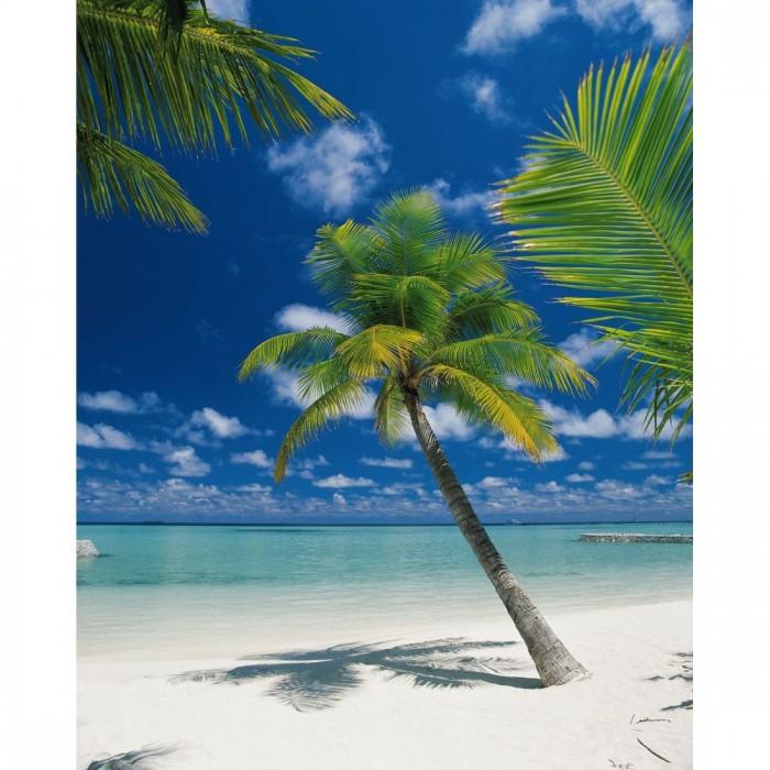 Φωτοταπετσαρία Τοίχου Παραλία - Komar - Decotek 4-883