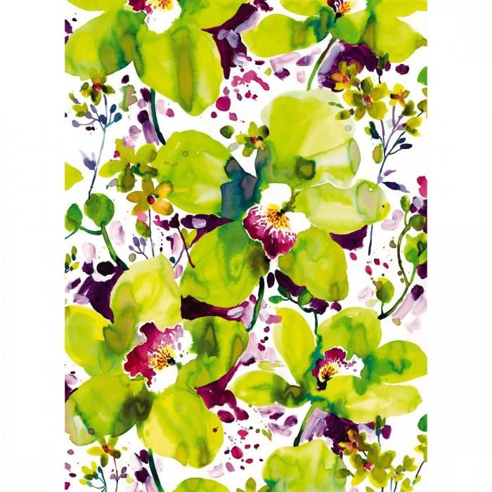 Φωτοταπετσαρία Τοίχου Λουλούδια - Komar - Decotek 4-942