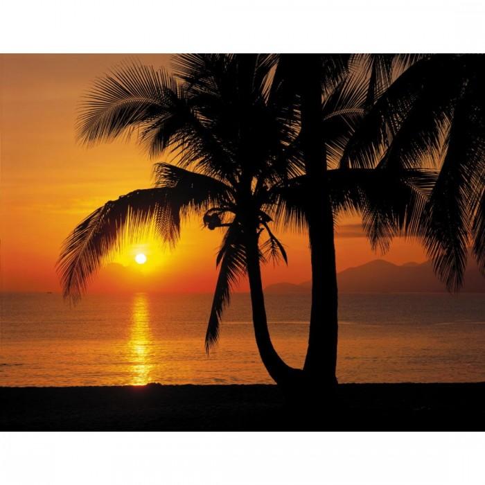 Φωτοταπετσαρία Τοίχου Παραλία - Komar - Decotek 8-255