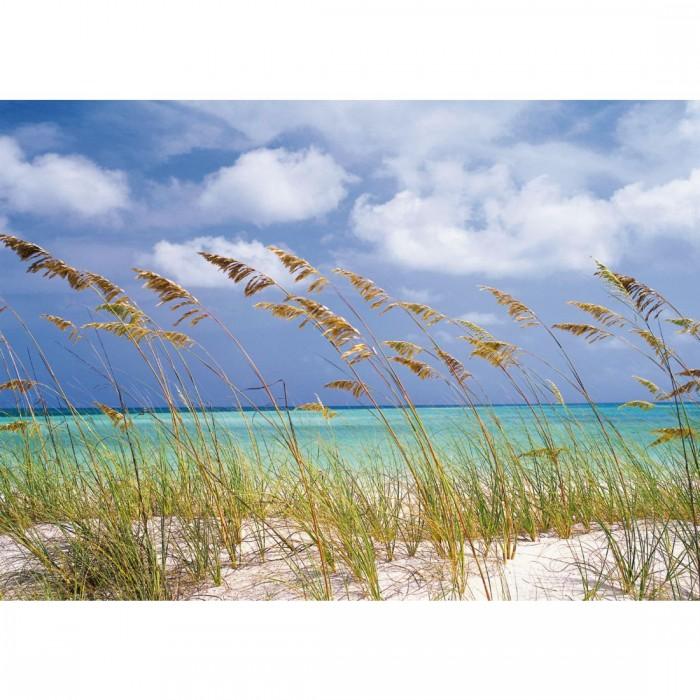 Φωτοταπετσαρία Τοίχου Αεράκι στον Ωκεανό - Komar - Decotek 8-515