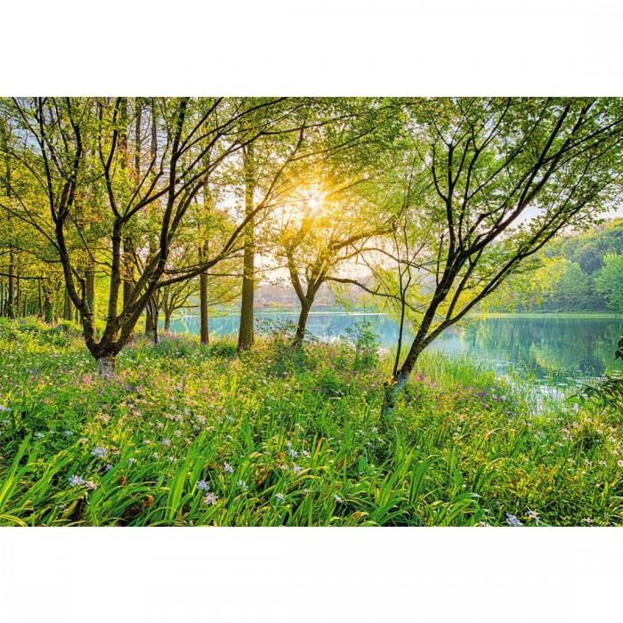 Φωτοταπετσαρία Τοίχου Ανοιξιάτικη Λίμνη - Komar - Decotek 8-524