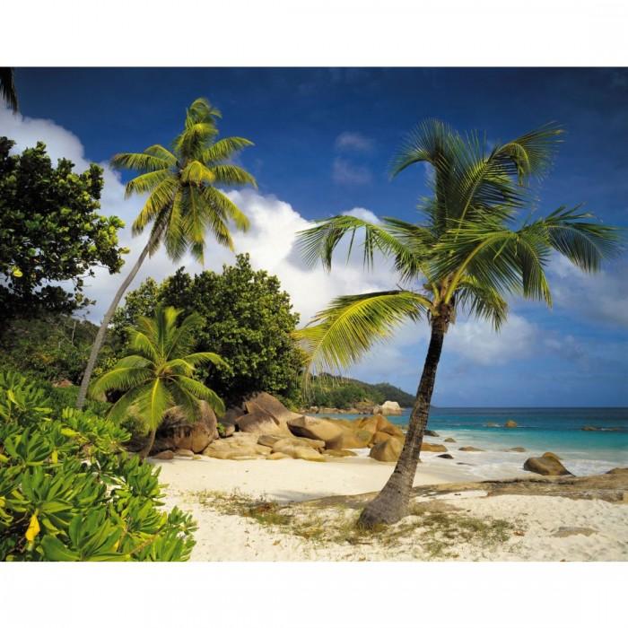 Φωτοταπετσαρία Τοίχου Παραλία - Komar - Decotek 8-885