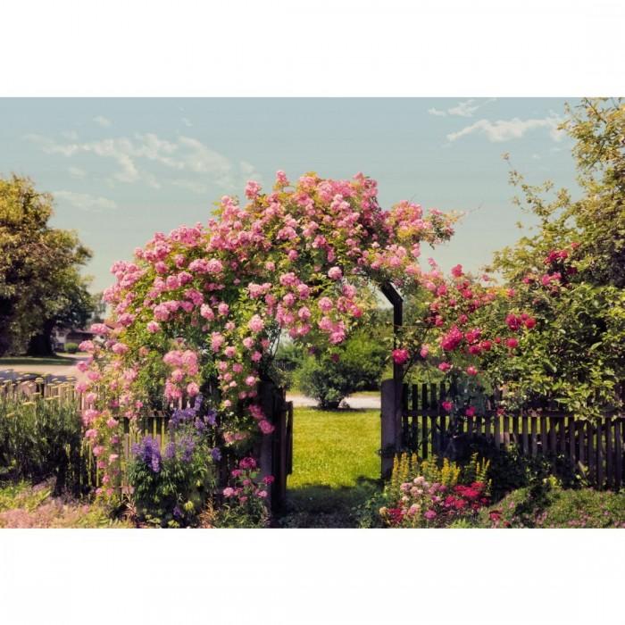Φωτοταπετσαρία Τοίχου ο Κήπος των Λουλουδιών - Komar - Decotek 8-936