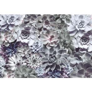 Φωτοταπετσαρία Τοίχου Λουλούδια - Komar - Decotek 8-962