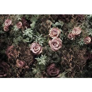 Φωτοταπετσαρία Τοίχου Λουλούδια - Komar - Decotek 8-980