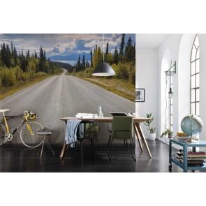 Φωτοταπετσαρία Τοίχου O Δρόμος προς τη Λίμνη, Komar - Decotek 8-532