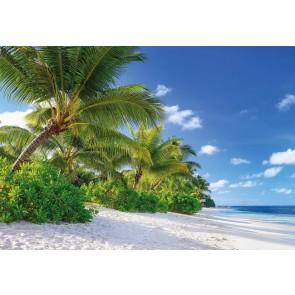 Φωτοταπετσαρία Τοίχου Παραλία Reunion , Komar - Decotek 8-992