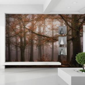 Φωτοταπετσαρία Τοίχου Δάσος- W+G - Decotek D-NW3478-7