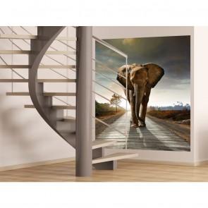 Φωτοταπετσαρία Τοίχου Ελέφαντας - A&G Design Group - Decotek FTL 1614