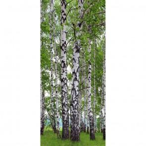 Φωτοταπετσαρία Πόρτας & Τοίχου Δάσος - A&G Design Group - Decotek FTV 1510