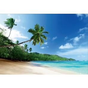 Φωτοταπετσαρία Τοίχου Παραλία - 1wall - Decotek NW8P-BEACH-001