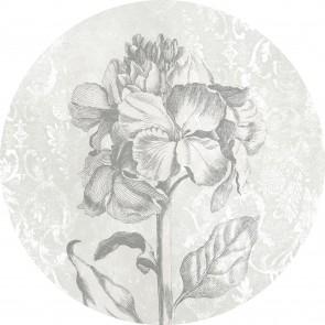 Komar Non Woven Photomural Barock Beauty