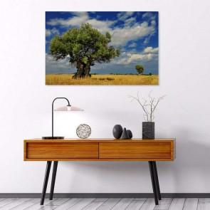 Πίνακας Ζωγραφικής Old Tree