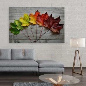 Πίνακας Ζωγραφικής Colorful Leaves