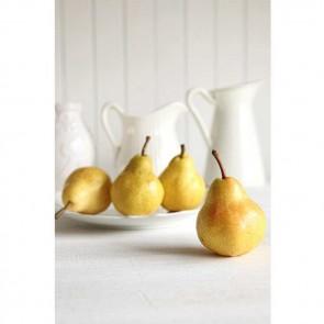 Πίνακας Ζωγραφικής Yellow Pears