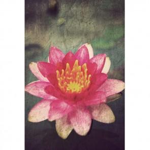 Πίνακας Ζωγραφικής Painted Lilly