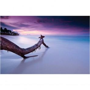 Πίνακας Ζωγραφικής Sea Sunset - Decotek 13606