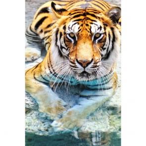 Πίνακας Ζωγραφικής Bengal Tiger Near The Water – Decotek 180817