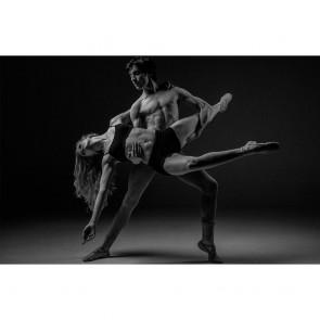 Πίνακας Ζωγραφικής Dancing Couple - Decotek 180863