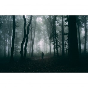 Πίνακας Ζωγραφικής  Mysterious Man In Misty Forest - Decotek 180989