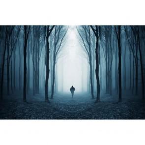 Πίνακας Ζωγραφικής  Misterious Surreal Forest - Decotek 180990