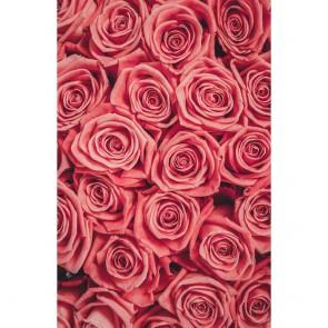 Πίνακας Ζωγραφικής Pink Roses Bouquet – Decotek 181026
