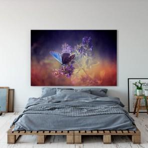 Πίνακας Ζωγραφικής Purple Butterfly - Decotek 181033