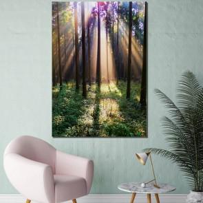Πίνακας Ζωγραφικής Sun Light In The Forest – Decotek 181069