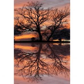 Πίνακας Ζωγραφικής Sunset Reflections – Decotek 181072