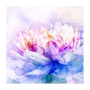 Πίνακας Ζωγραφικής Water Lily - Decotek 181104
