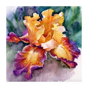 Πίνακας Ζωγραφικής Yellow Iris - Decotek 181125