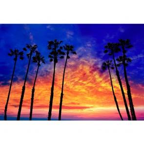 Πίνακας Ζωγραφικής California Palm Trees At Sunset - Decotek 190882