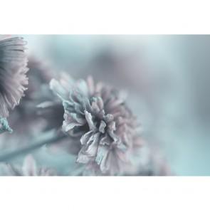 Πίνακας Ζωγραφικής Vintage Flowers In Gradient Background - Decotek 191138