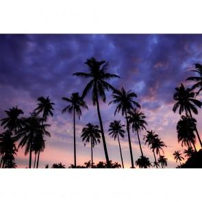 Πίνακας Ζωγραφικής Palms In Purple Sky - Decotek 191160