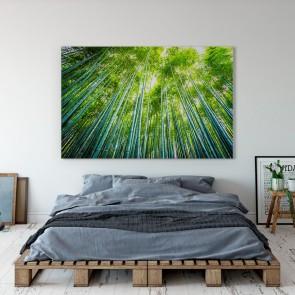 Πίνακας Ζωγραφικής Tropical Trees - Decotek 191248