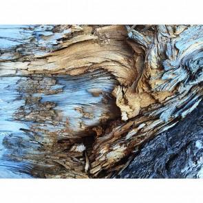 Πίνακας Ζωγραφικής Wood Texture - Decotek 191272