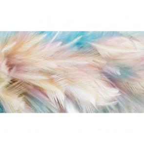 Πίνακας Ζωγραφικής Pale Feathers - Decotek 191282