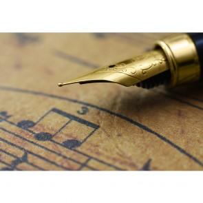 Πίνακας Ζωγραφικής Pen Closeup - Decotek 191292