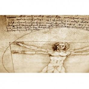 Πίνακας Ζωγραφικής Vitruvian Man - Decotek 16263