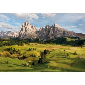 Φωτοταπετσαρία Τοίχου Βουνό και Λιβάδια  - Komar - Decotek 8-982