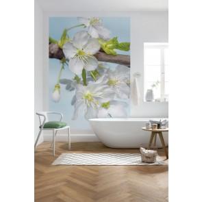 Φωτοταπετσαρία Τοίχου Λουλούδια - Komar - Decotek XXL2-033