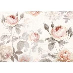 Φωτοταπετσαρία Τοίχου Λουλούδια - Komar - Decotek XXL4-034